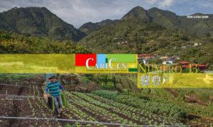 CariCen 13 – Marzo-Abril 2019