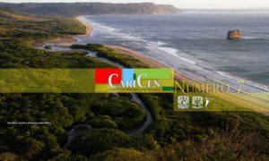 CariCen 7- Marzo-Abril 2018